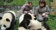 Michelle Obama Guida Pandas Gigantes